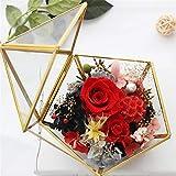 Geometrisches Glas Terrarium Box Schmuckschatulle Glas Sukkulente...