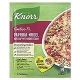 Knorr Fix Paprika Nudel Auflauf mit Hackfleisch, 38g