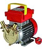 Rover 20CE elektrische Bisenso-Umfüllpumpe für Wein, Wasser,...